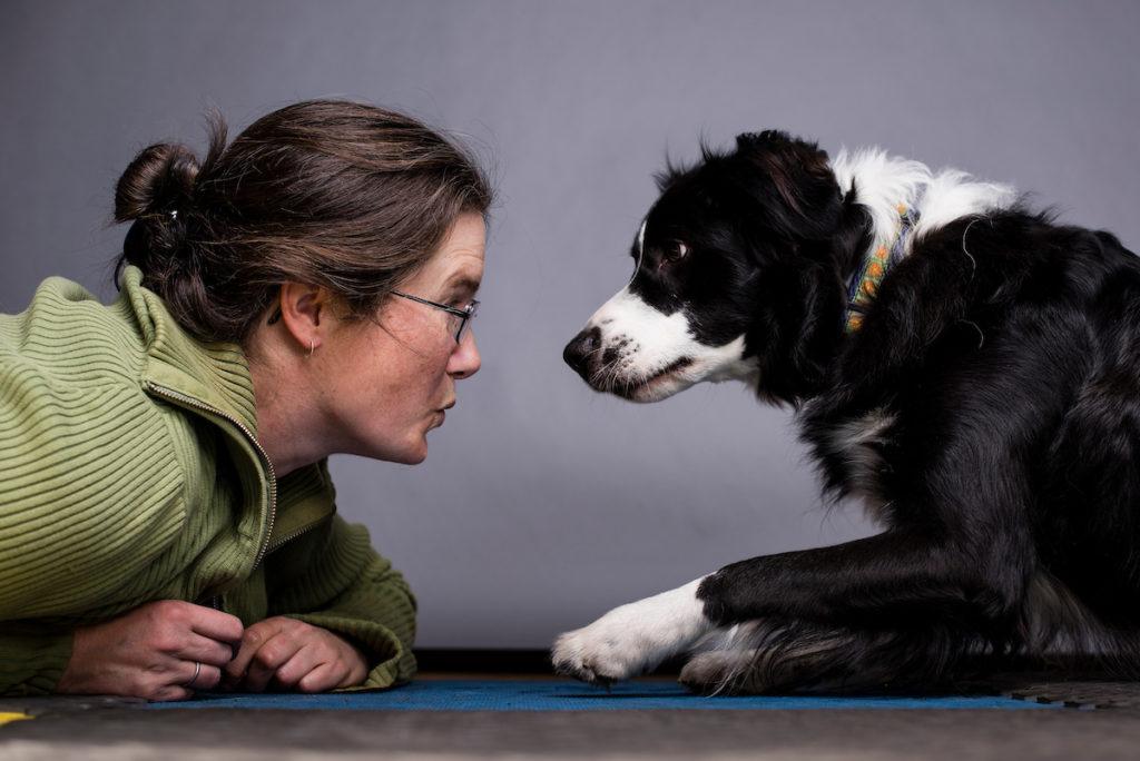 About Us – Animal Health Advice
